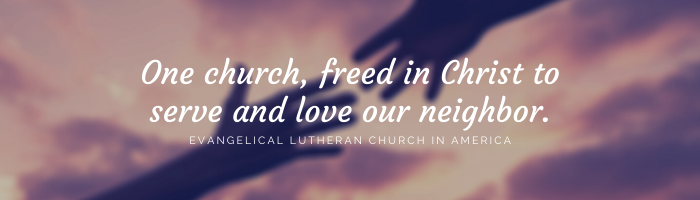 One church, freed in Christ to serve and love our neighbor